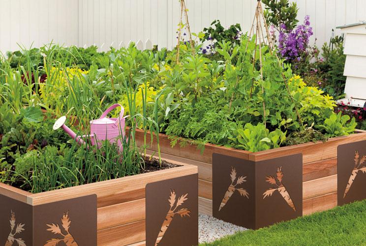 Дизайны сада и огорода своими руками
